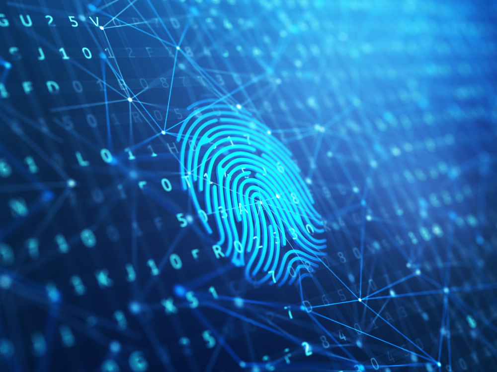 biometric technology and digital identity in emerging economies